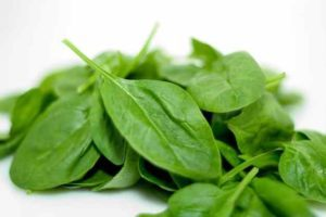 Spinach leaves for toothache