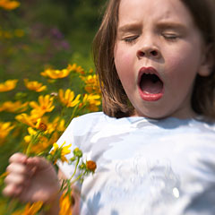 Home Remedies for Hay Fever