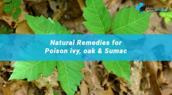 Natural Remedies for Poison ivy, oak & Sumac-min